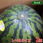 【送料無料】熊本県産 スイカ 秀品・L〜2Lサイズ 2玉入り