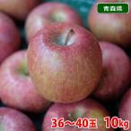 青森県産 サンふじりんご 等級A・40玉入り 10kg