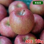 【送料無料】青森県産 サンふじりんご 等級A・40玉入り 10kg(CA貯蔵)