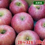 長野県産 サンふじ 秀品 10kg(28〜32玉入り)