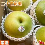 鳥取県産 梨 二十世紀梨 12〜14玉入り 5kg