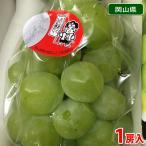 岡山県産 桃太郎ぶどう 1房入り 700g〜1kg(化粧箱)