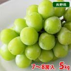 送料無料 長野県産 シャインマスカット 7〜8房入り 5kg