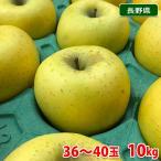 送料無料 長野県産 シナノゴールド 10kg 36〜40玉入り(箱)