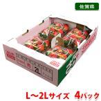 佐賀県産いちご さがほのか 270g×4パック入り(箱)