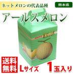 熊本県産アールスメロン Lサイズ 1玉 【化粧箱入り】