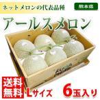 熊本県産アールスメロン Lサイズ 6玉入り