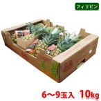 【送料無料】フィリピン産 パイナップル 10kg(6〜9玉入り)