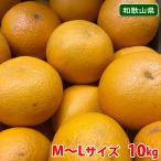 【送料無料】和歌山県産 清見オレンジ 秀品・L〜3Lサイズ 10kg(1箱)