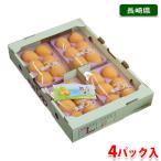 長崎県産 びわ 4パック入り箱(6〜8個/パック)
