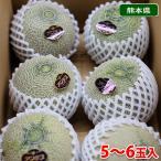 【送料無料】熊本県産 アンデスメロン 5〜6玉入り(1箱)