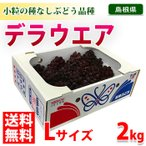 【送料無料】島根県産ぶどう デラウェア 秀品・Lサイズ 2kg(10〜14房入り)