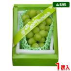 山梨県産 匠の葡萄 シャインマスカット 1房入り 700g〜800g(化粧箱)