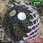 【送料無料】島根県産 アムスメロン 特秀 5~6玉入り(箱)