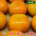 送料無料 奈良県産 富有柿 秀品・3L(約33玉入り)10kg箱