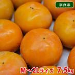 奈良県産 富有柿 秀品・M〜2Lサイズ (28〜36玉入)/箱