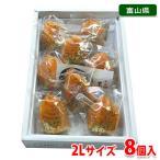 富山 あんぽ柿 秀品 2Lサイズ 8個入り(化粧箱)