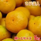 佐賀県産 温州みかん さが美人 秀品・M〜Lサイズ 5kg(箱)