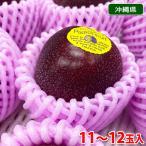 【送料無料】沖縄県産 津嘉山 パッションフルーツ 11玉入り
