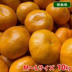 【送料無料】徳島 勝浦みかん(晩生みかん・十万)10kg Mサイズ