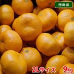 【送料無料】徳島 勝浦みかん(晩生みかん・十万)10kg 2Lサイズ