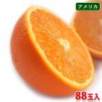 【送料無料】ピュアスペクト ネーブルオレンジ 「BLACK」 88玉入り