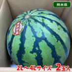 【送料無料】熊本県産 すいか 肥後浪漫 秀品・L〜2Lサイズ 2玉入り(1箱)