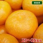 徳島県産 ハウスみかん 秀品 2.5kg(23〜25玉入り)化粧箱