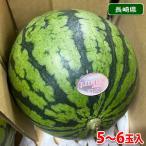 長崎県産 小玉すいか(こだま西瓜)秀品 5〜7玉入(箱)