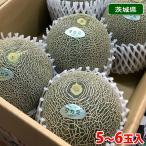 【送料無料】茨城県産 タカミメロン(貴美メロン)4〜6玉入/箱