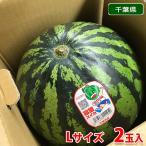 【送料無料】千葉県産 富里すいか Lサイズ 2玉入り(約7kg)