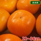 奈良県産 たねなし柿 32玉〜36玉入り(約7.5kg)