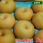 長野県産 梨 南水(なんすい) 太鼓判 10〜14玉入り 5kg箱