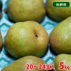 長野県産 洋梨 ラ・フランス 秀品 20〜24玉入り 5kg箱