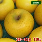 送料無料 長野県産 王林 秀品 10kg(28〜32玉入り)