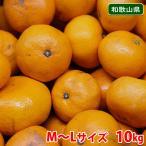 【送料無料】和歌山県産  有田 新堂みかん M〜Lサイズ 10kg