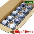【送料無料】佐賀県産 ブルーベリー 100g×10パック入り(1箱)
