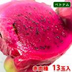 【送料無料】ベトナム産 ドラゴンフルーツ 赤肉種 13玉〜16玉入り(1箱)
