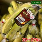 【送料無料】フィリピン産 バナナ 甘熟王(ハイランド) 19〜21房入り/箱