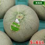 送料無料 青森県産 メロン ハニーゴールデン 5〜6玉入