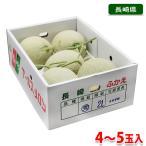送料無料 長崎県産 メロン アールスメロン 4〜5玉入り (箱)