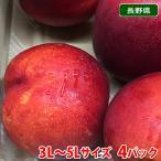 送料無料 長野県産 ネクタリン 3L〜5Lサイズ 8パック入り箱