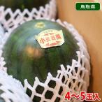 送料無料 鳥取県産 小玉すいか 大栄スイカ 4〜5玉入り