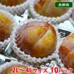 送料無料 長野県産 プラム 秋姫 2Lサイズ 10パック入り