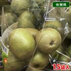 送料無料 佐賀県産 キウイフルーツ 4〜5玉入×15袋(箱)