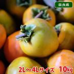 送料無料 奈良県産 江戸柿 秀品・2L〜3Lサイズ 10kg