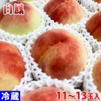 和歌山県産 桃 白鳳 11〜13玉入 約4kg(化粧箱)