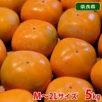奈良県産 刀根柿 M〜2Lサイズ(32〜40玉入)(箱)