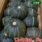 北海道産 坊ちゃん南瓜 12個〜16個入り/箱(約5kg)