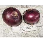 兵庫県産 赤タマネギ 秀品・Lサイズ 約1kg(4〜5玉入り)
